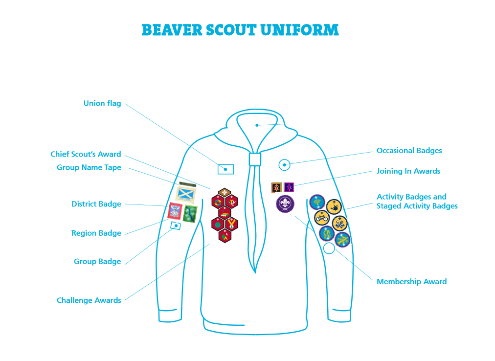 badge positions beavers