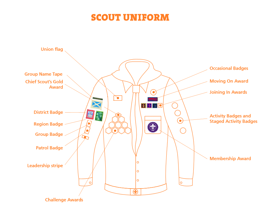 badge positions scouts